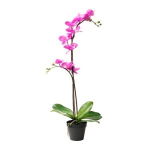 12,99Euro.fejka-pianta-artificiale-rosa__0367998_PE549551_S4